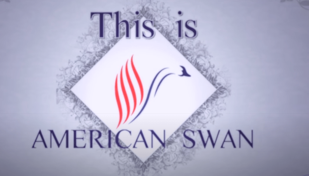 american swan features
